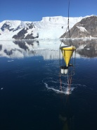 The sediment trap rising from the depths in Andvord Bay.